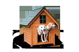 Kutyaház & kutyaágy