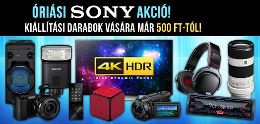 Sony aukció