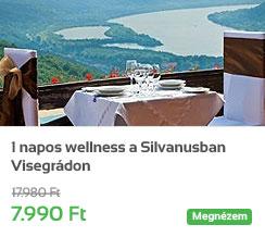 1 napos wellness a Silvanusban Visegr�don